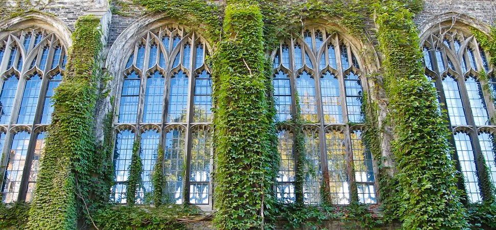 Duke U ivy-building
